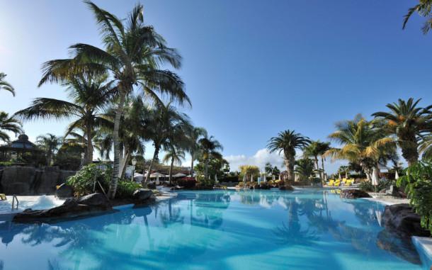 teneriffe swimming pool palms